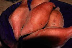 Picture of garnet yams
