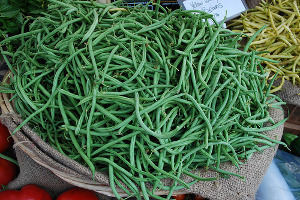Picture of Haricorverte aka French Green Beans