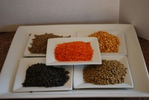 Picture of Different Kinds of Lentils