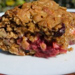 Oat Bars With Cranberries