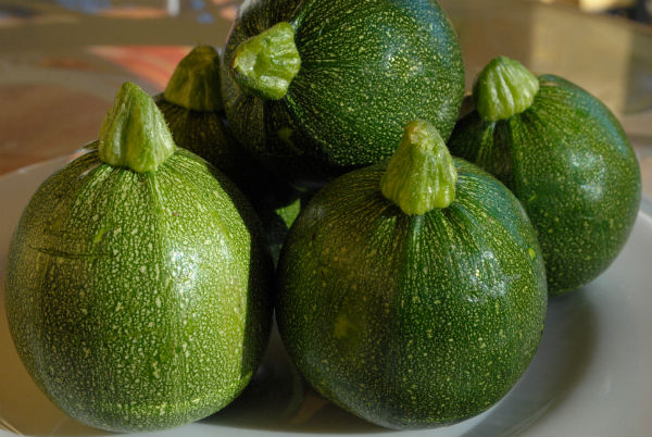 Blood ORanges 030