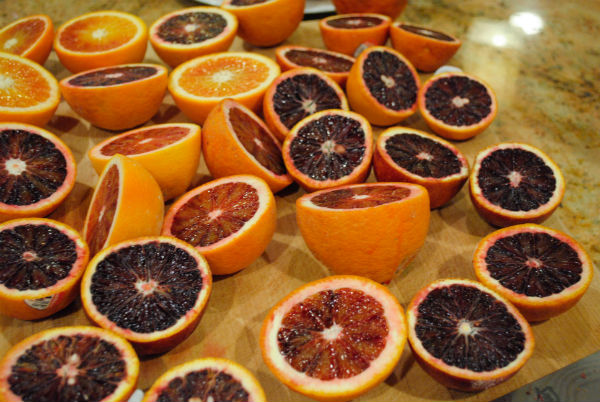 Blood ORanges 034
