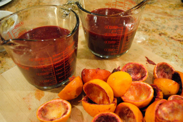 Blood ORanges 038