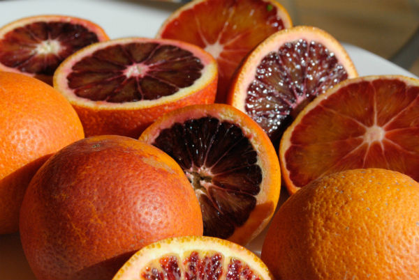 Blood ORanges 023