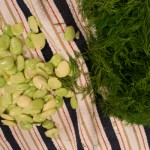 Fresh Lima Bean and Dill Basmati Rice