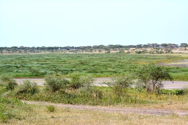 Tanzania 051