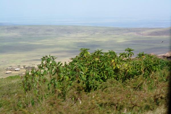 Tanzania 147